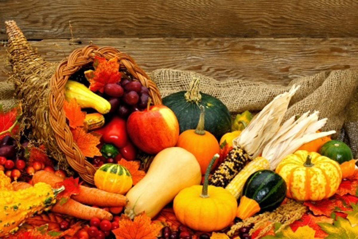 22971294 - harvest or thanksgiving cornucopia filled with vegetables against wood